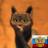 Ytuber.su - онлайн магазин, купить ютубер (ytuber) баллы в 3 раза дешевле, чем на сайте ytuber.ru! - последнее сообщение от Сергей^^^ Сергей^^^