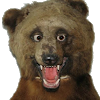 90р от вопросника за регу через тг. с быстрым выводом на ltc, btc - последнее сообщение от Eskimo :3