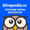 Как выбрать Instagram аккаунт с подписчиками - последнее сообщение от Slivopedia